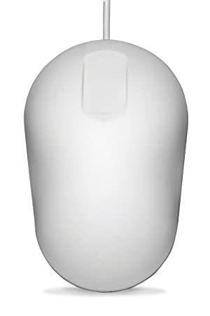 valge hiir